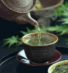 green tea skin health benefits Green Tea Skin & Health Benefits
