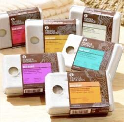 meet pangea organics handmade soap entrepreneur josh onysko Meet Pangea Organics Handmade Soap Entrepreneur Josh Onysko