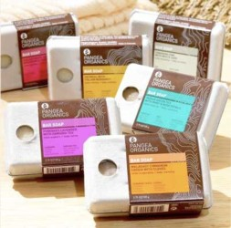 Meet Pangea Organics' Handmade Soap Entrepreneur Josh Onysko