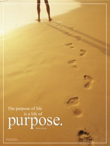 what is your purpose find your true desire and passion in life What is Your Purpose   Find Your True Desire and Passion in Life